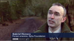 Gabriel Hemery on BBC Newsnight January 2011
