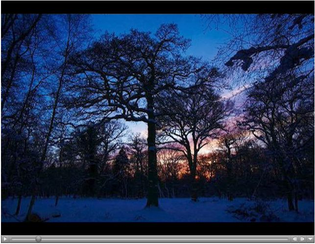 Timelapse photography of the OakOak in snow